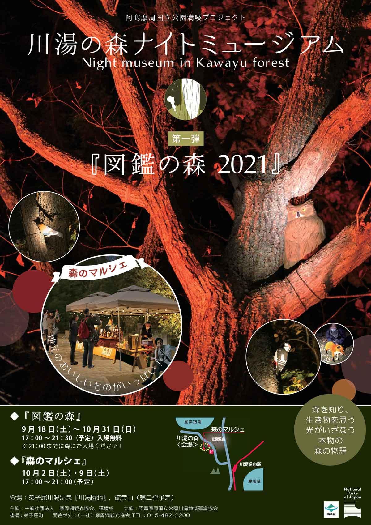 夜の森にAR動物が登場!川湯の森ナイトミュージアムで「図鑑の森」開催